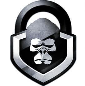 lock-monkeys-logo.jpg